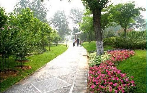 道路景观效果图 武汉园林景观设计 绿化工程施工 屋顶花